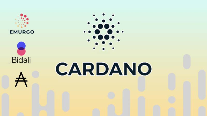 Cardano network